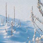Gelo e Neve in dirittura d'arrivo